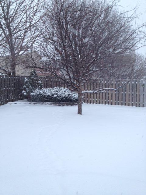 Snow Preschool Theme