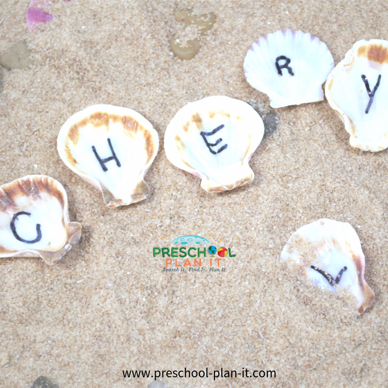 Beach Shell Names Activity for Preschool Beach Theme