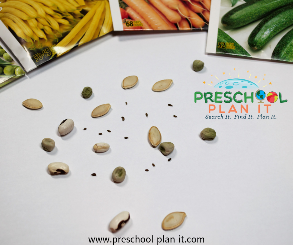 Seed Mosaic Art for a Planting Seeds Preschool Theme