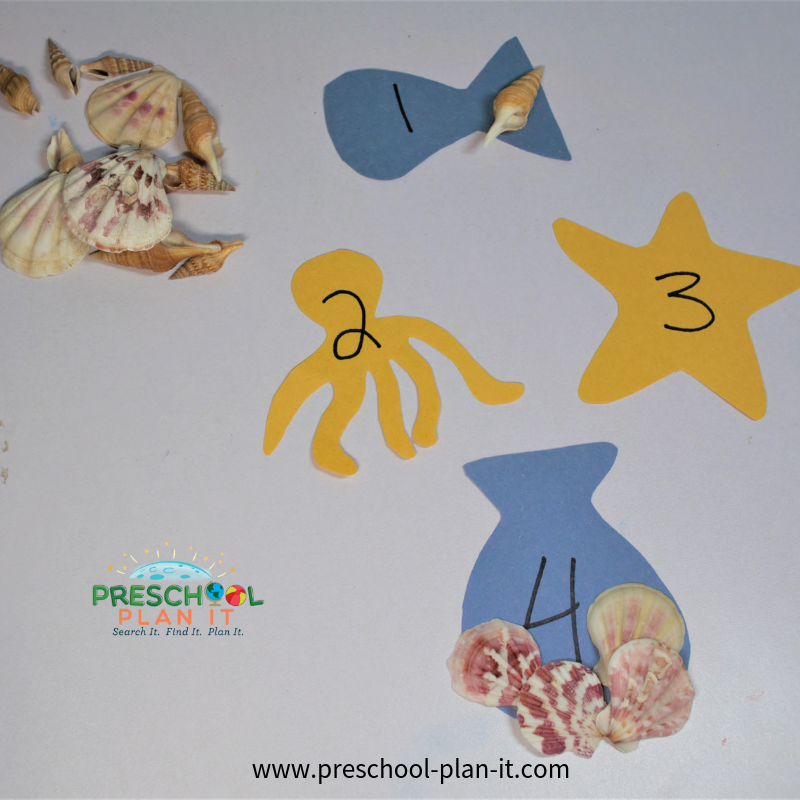 Sea Shell Matching Game  for Preschool Summer Theme