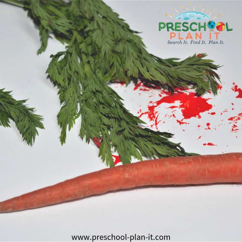 Fruits and Vegetables Preschool Theme Painting with Carrots