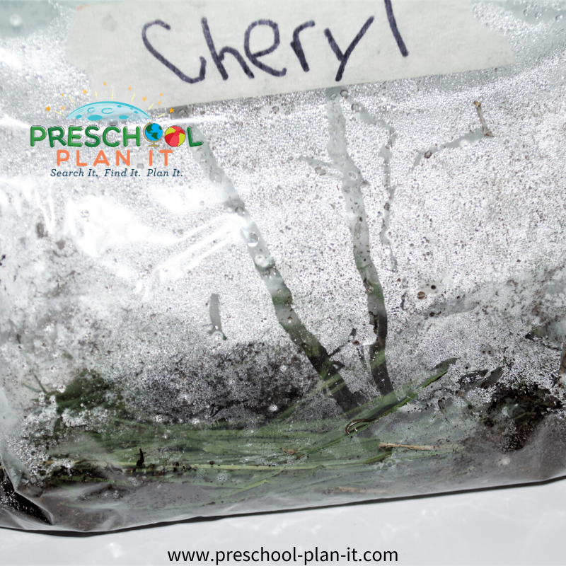 Preschool Rain Theme Science Activity