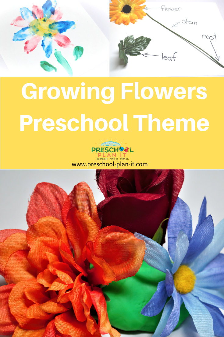 Growing Flowers Preschool Theme