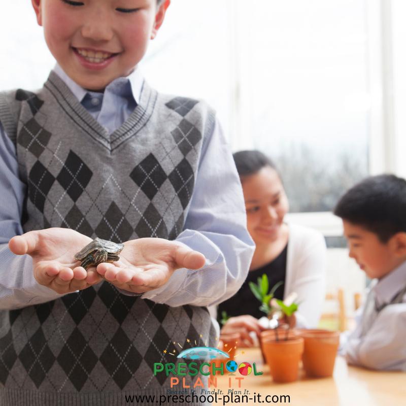 Preschool Classroom Pets