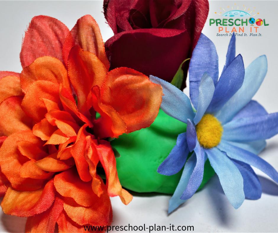 Growing Flowers Preschool Theme Flower Arranging Math Activity