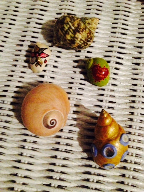 Classroom Board Ideas For Preschool ~ Hermit crabs as preschool classroom pets