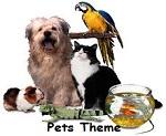 Pets Preschool Theme
