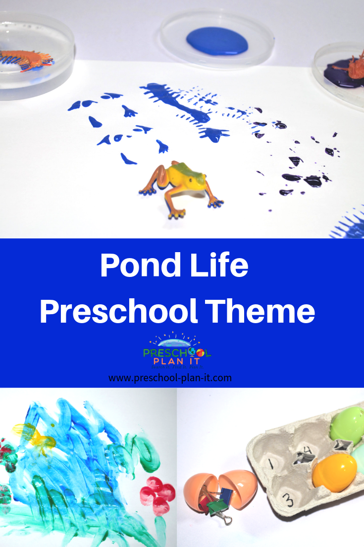Pond Life Theme For Preschool