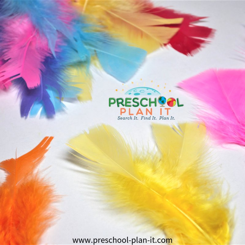 Feather sorting for a Preschool Birds Theme