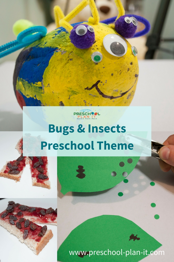 Bugs & Insects Preschool Theme
