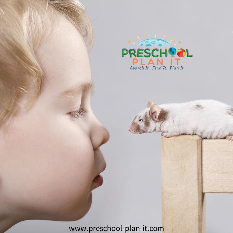 Mice Preschool Theme Classroom Visitor