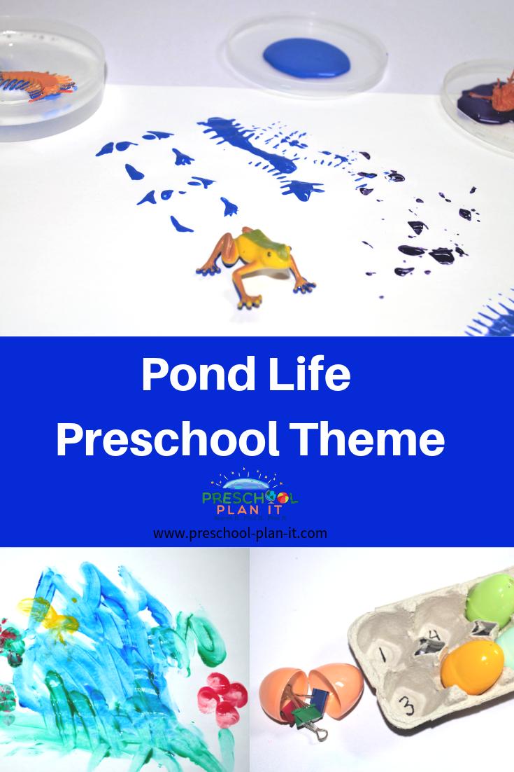 Pond Life Preschool Theme