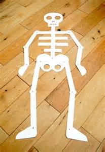 My Body Preschool Theme