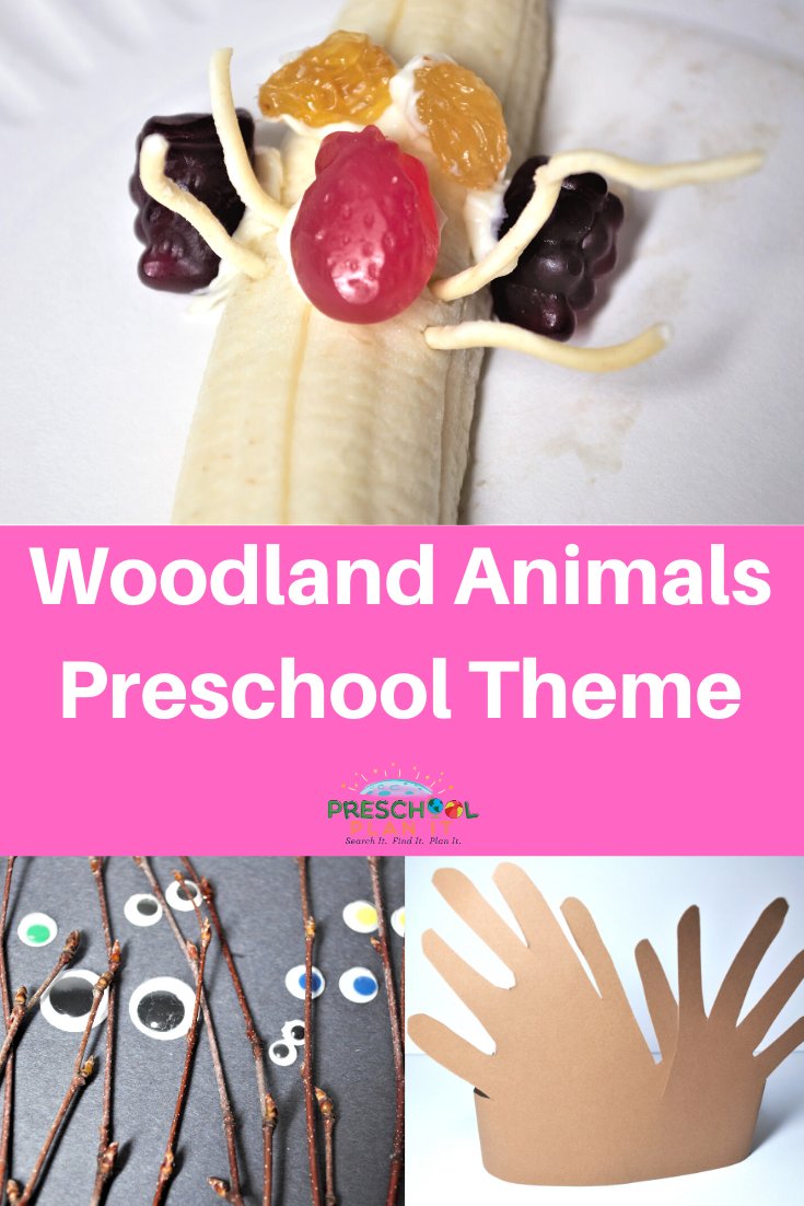 Woodland Animals Preschool Theme